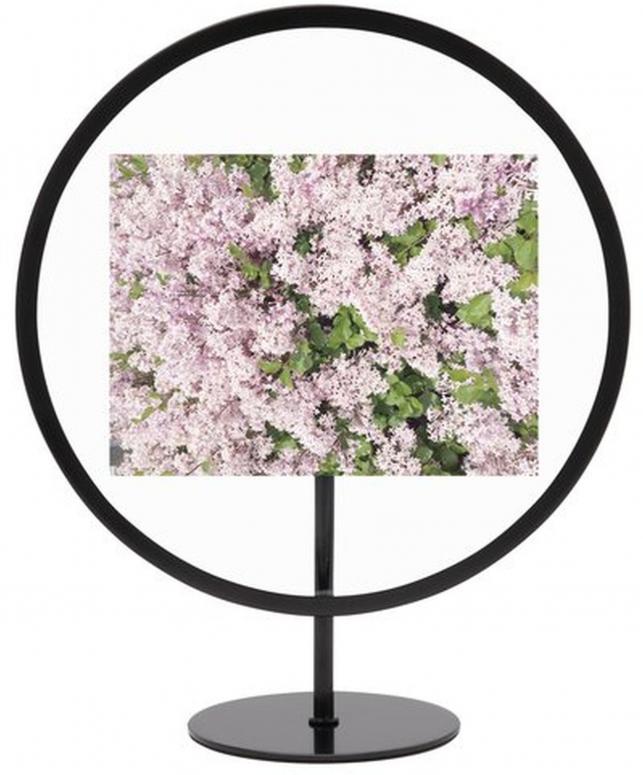 Umbra Infinity Photo Display 10x15cm Black