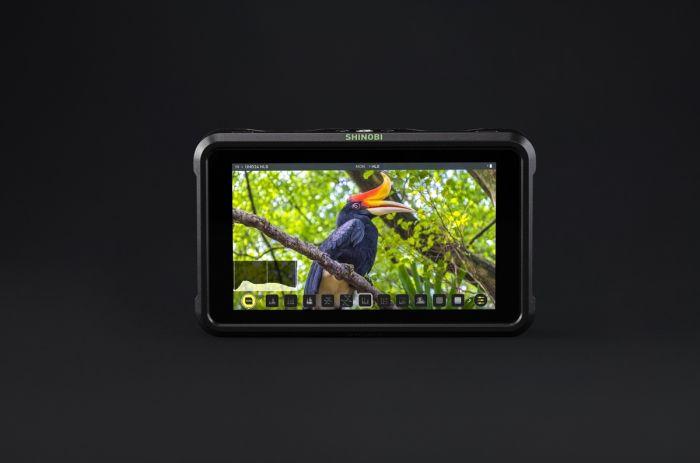 Atomos Shinobi 5 Foto- und Videomonitor