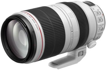 Canon EF 100-400mm 1:4,5-5,6 L IS II USM