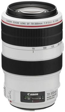 Canon EF 70-300mm 1:4-5,6 L IS USM